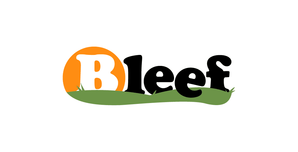 Logo Design Brisbane - Bleef