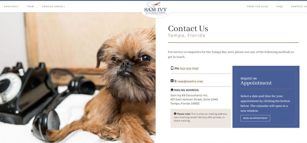 Contact freelance web designer Brisbane - SamIvy